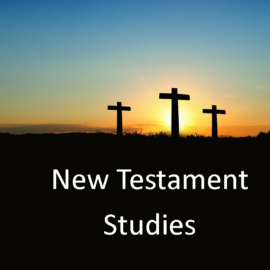 New Testament Studies